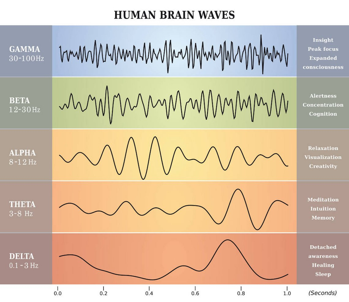 Human Brain Wave Frequencies